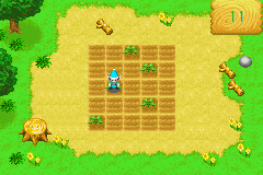 Harvest Moon - More Friends of Mineral Town - Mini-Game Watering - This gets hard after a while... - User Screenshot