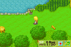 Harvest Moon - More Friends of Mineral Town - Location Mountain Pass - Monkeys totally live near farms - User Screenshot