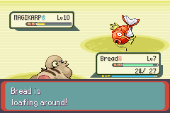 Pokemon Emerald - Battle  - lool bread - User Screenshot