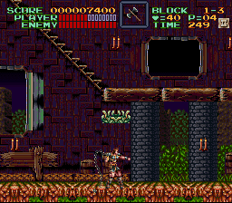 Super Castlevania IV - Level  - Gonna whip this plant thing - User Screenshot