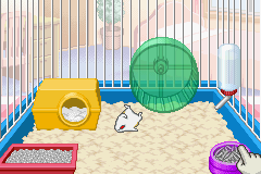 Petz - Hamsterz Life 2 - Sleeping Hamster - User Screenshot