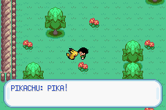 Pokemon Ash Gray (beta 2.5z) - Level  - Hey! Get back in your ball! Wait, nevermind. - User Screenshot
