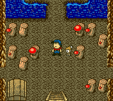 Harvest Moon GBC - Misc Power Berry Location - Give sprites mushrooms regularly - User Screenshot