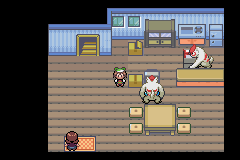 Pokemon Flora Sky - Complement Dex Version - Location Home - Bottom Floor - User Screenshot