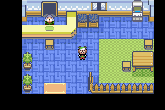 Pokemon Flora Sky - Complement Dex Version - Location Day-care - Inside - User Screenshot