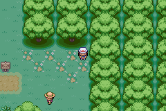 The tile in Viridian Forest