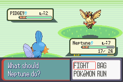 Pokemon Ruby Destiny Reign of Legends - Battle  - Everyday I be Pidgeying! - User Screenshot