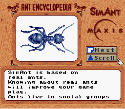 Sim Ant - Character Profile ant -  - User Screenshot