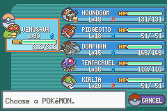 Pokemon Fuligin - Battle  - I need to train for victory road...... - User Screenshot