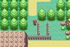 Pokemon Elements - Hello? Are you having fun up that tree? - User Screenshot