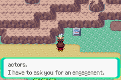 Pokemon Emerald - Battle  - NO. - User Screenshot