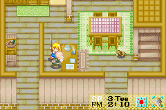 Harvest Moon - More Friends of Mineral Town - Misc PREPARE TO DAI - PREPARE TO DIE OLD MAN! - User Screenshot