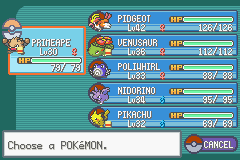 Pokemon Ash Gray (beta 2.5z) - Team at End of Beta2.5 - User Screenshot
