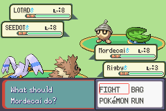 Pokemon Burning Ruby - Battle  - Dude.  - User Screenshot