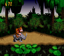 Donkey Kong Country - on a rhino - User Screenshot