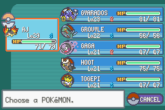 Pokemon Shiny Gold - Character Profile  - my team - User Screenshot