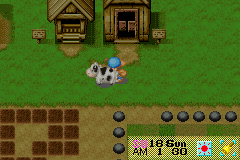 Harvest Moon - Friends of Mineral Town - Location The Farm - Pushing 10 animals at once lol - User Screenshot