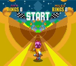 Amy Rose in Sonic the Hedgehog 2 - Mini-Game Special Stage 2 - 2P Vs Mode Special Stage 2 - User Screenshot