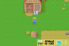 Harvest Moon - More Friends of Mineral Town - I turned into a Geko! - User Screenshot
