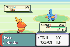 Pokemon Emerald - Battle  - Rival Battle #1 - User Screenshot