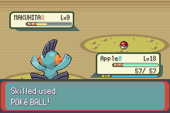 Pokemon Emerald - Battle  - Waiting intensifies... - User Screenshot