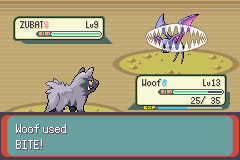 Pokemon Emerald - Battle  - The pooch strikes back! - User Screenshot