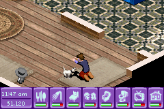 Urbz, The - Sims in the City - playing with my dog - User Screenshot