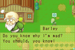 Harvest Moon - More Friends of Mineral Town - he get mad - User Screenshot