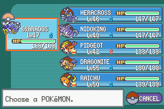 Team after 8th gym