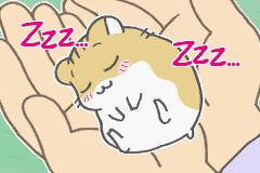 Petz - Hamsterz Life 2 - X3    ZzZzZzZz... - User Screenshot