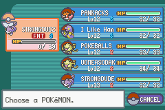 Pokemon Ash Gray (beta 2.5z) - my new pokemon team pikachu wont fight misty! - User Screenshot