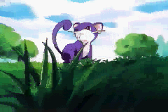 Rattata - - User Screenshot