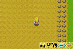 Harvest Moon - More Friends of Mineral Town - 0-0 Its gone? - User Screenshot
