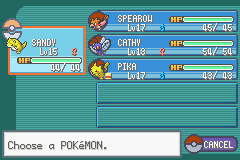 Pokemon Ash Gray (beta 2.5z) - My pokemon BEFORE - User Screenshot