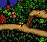 Donkey Kong Country -  - User Screenshot