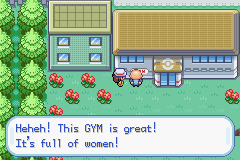 Pokemon Fire Red - Generations (v1 5) hack (GBA) Game - Game