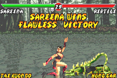Mortal Kombat - Tournament Edition (GBA) Game - Game Boy