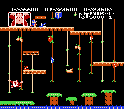 Donkey Kong Jr - Misc  - Winter