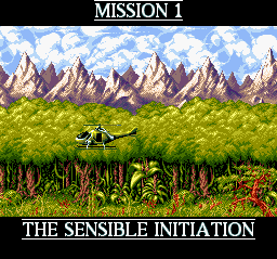Cannon Fodder - Cut-Scene  - Mission 1 - User Screenshot